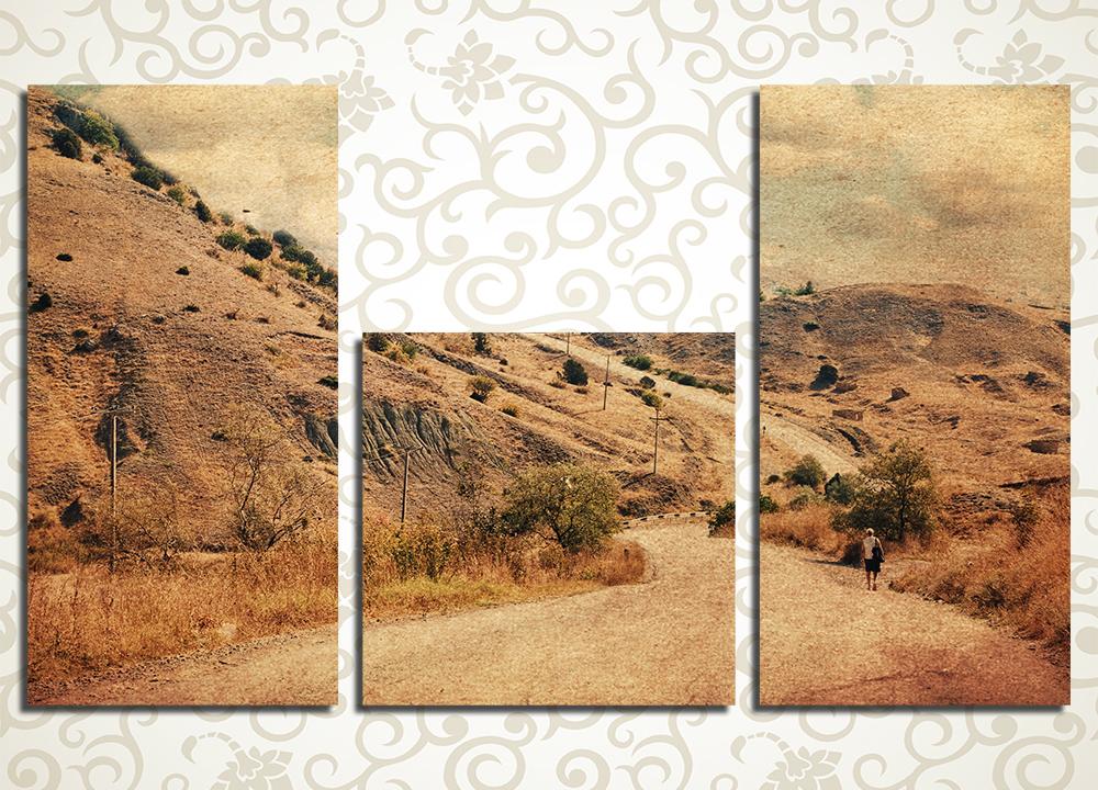 Модульная картина Пустынная дорога