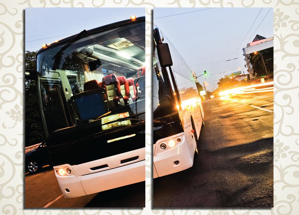 Модульная картина Белый автобус