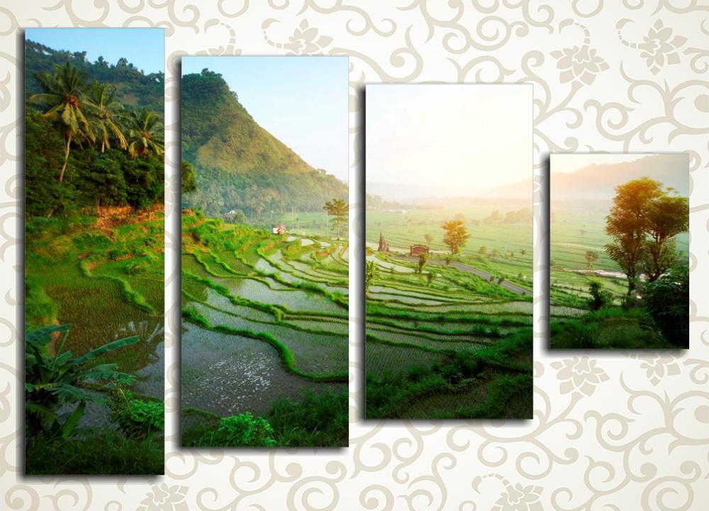 Модульная картина Рисовые поля