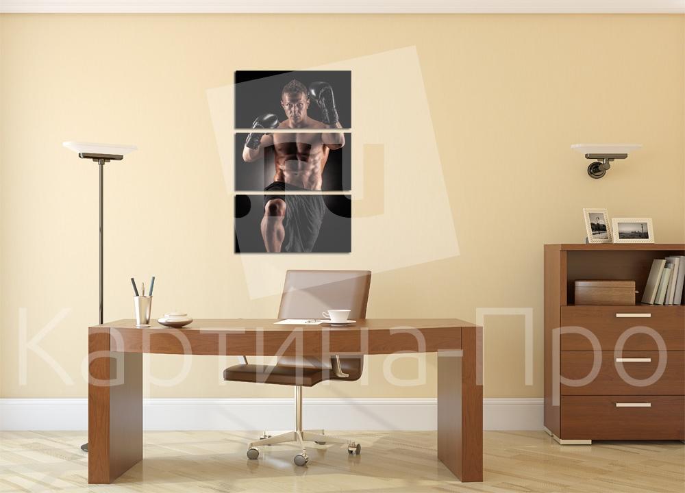 Модульная картина Боксер от Kartina-Pro