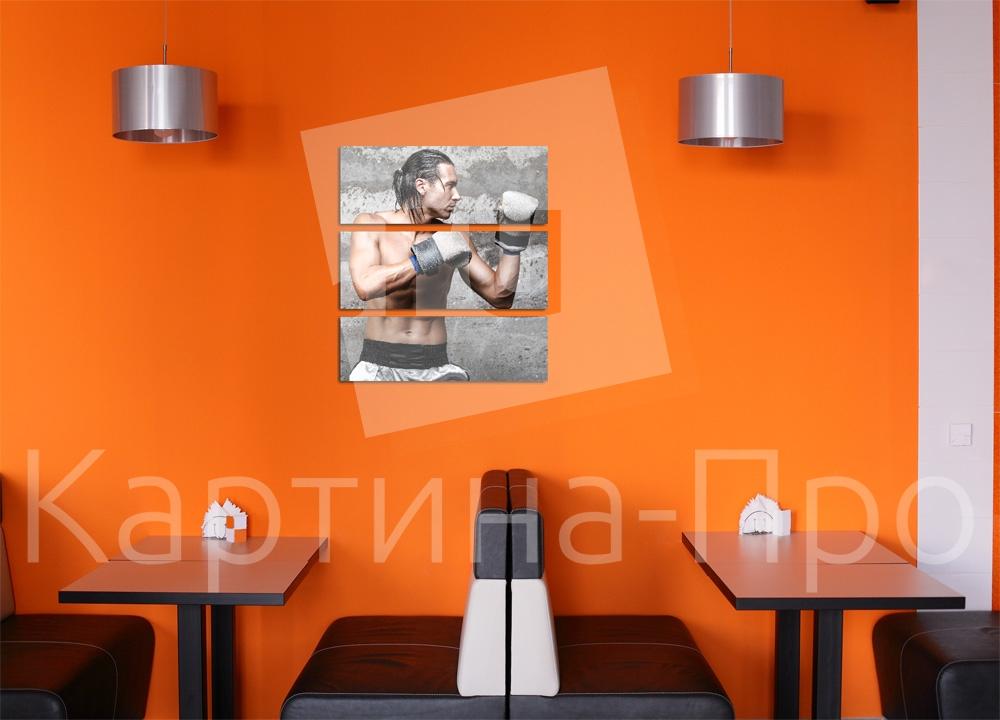 Модульная картина Харизматичный боксер от Kartina-Pro