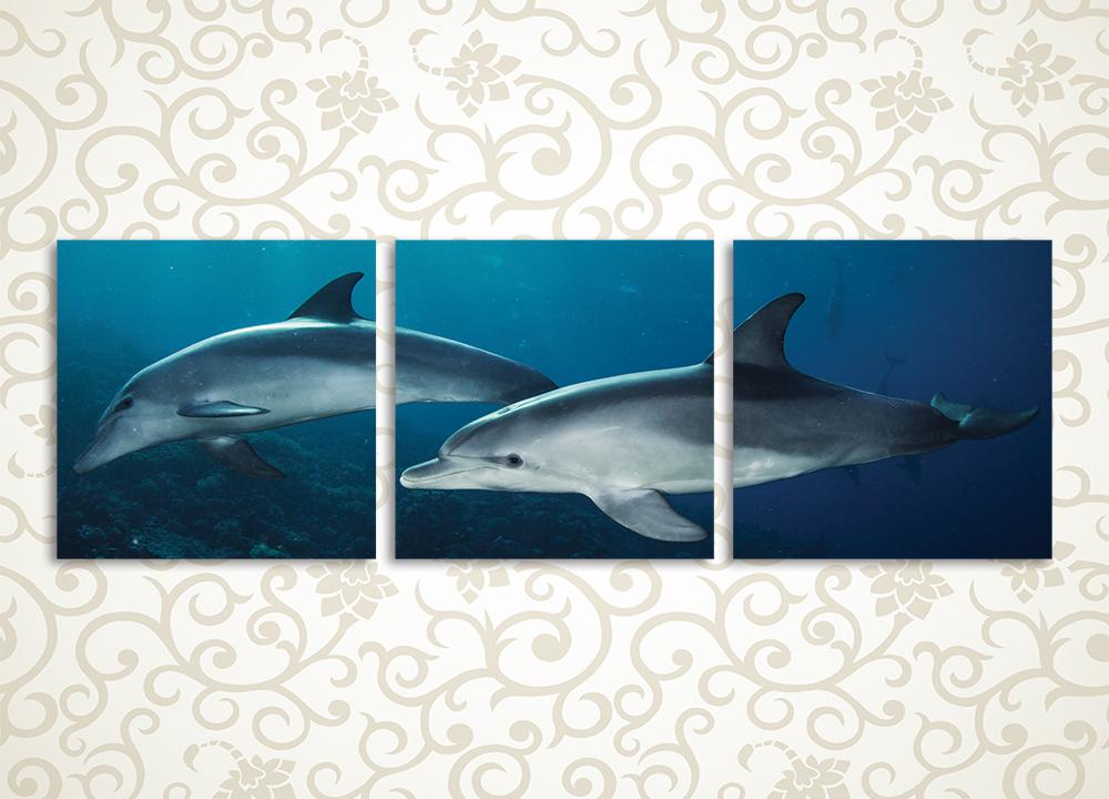 Модульная картина Стайка дельфинов